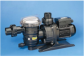Self Priming Pumps Made by France/China